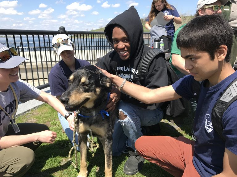 Photo of two Spring 2018 PLACE Fellows petting a dog on a Boston Harbor Island