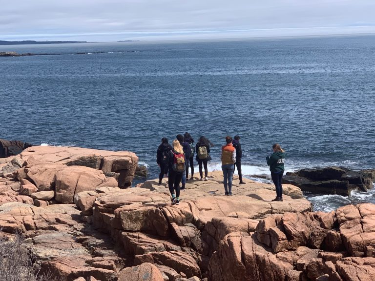 Spring 2019 PLACE Fellows and Leads admiring the ocean from a cliff in Acadia