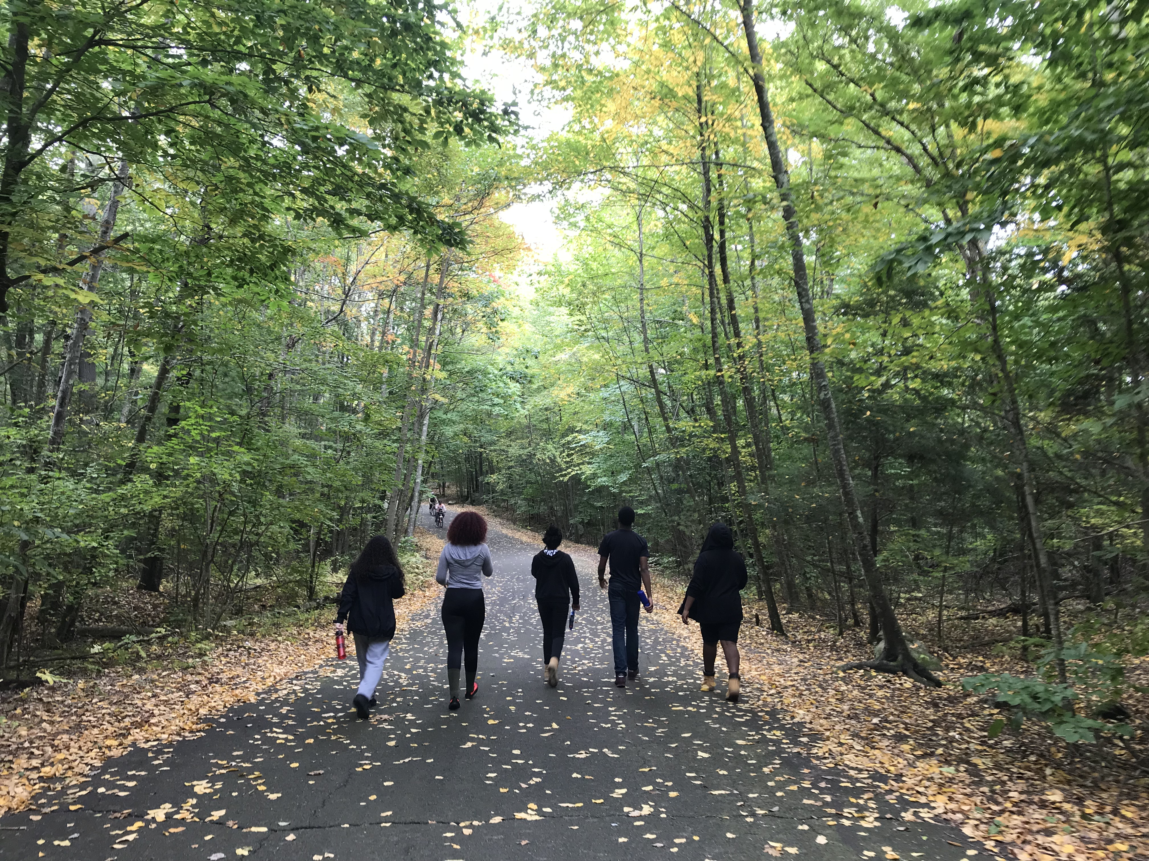 5 Fall PLACE Fellows walk away from the camera down a paved path through a forest in Wompatuck State Park