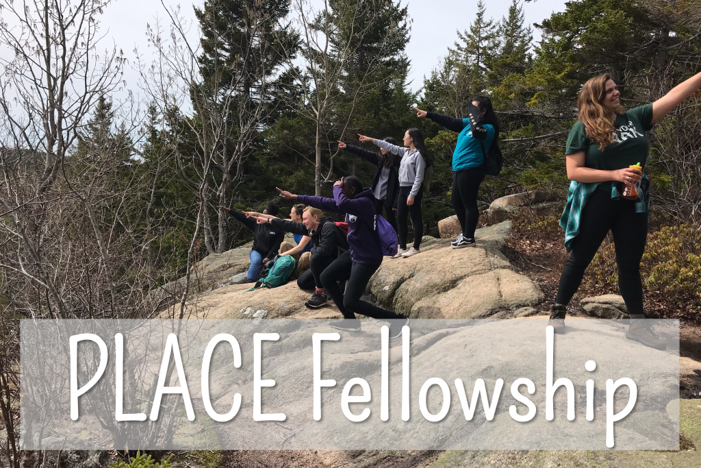 Spring 2019 PLACE Fellows and Leads all pointing into the distance at Acadia National Park
