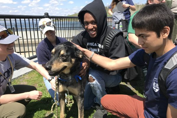 Two Spring 2018 PLACE Fellows petting a dog on a Boston Harbor Island